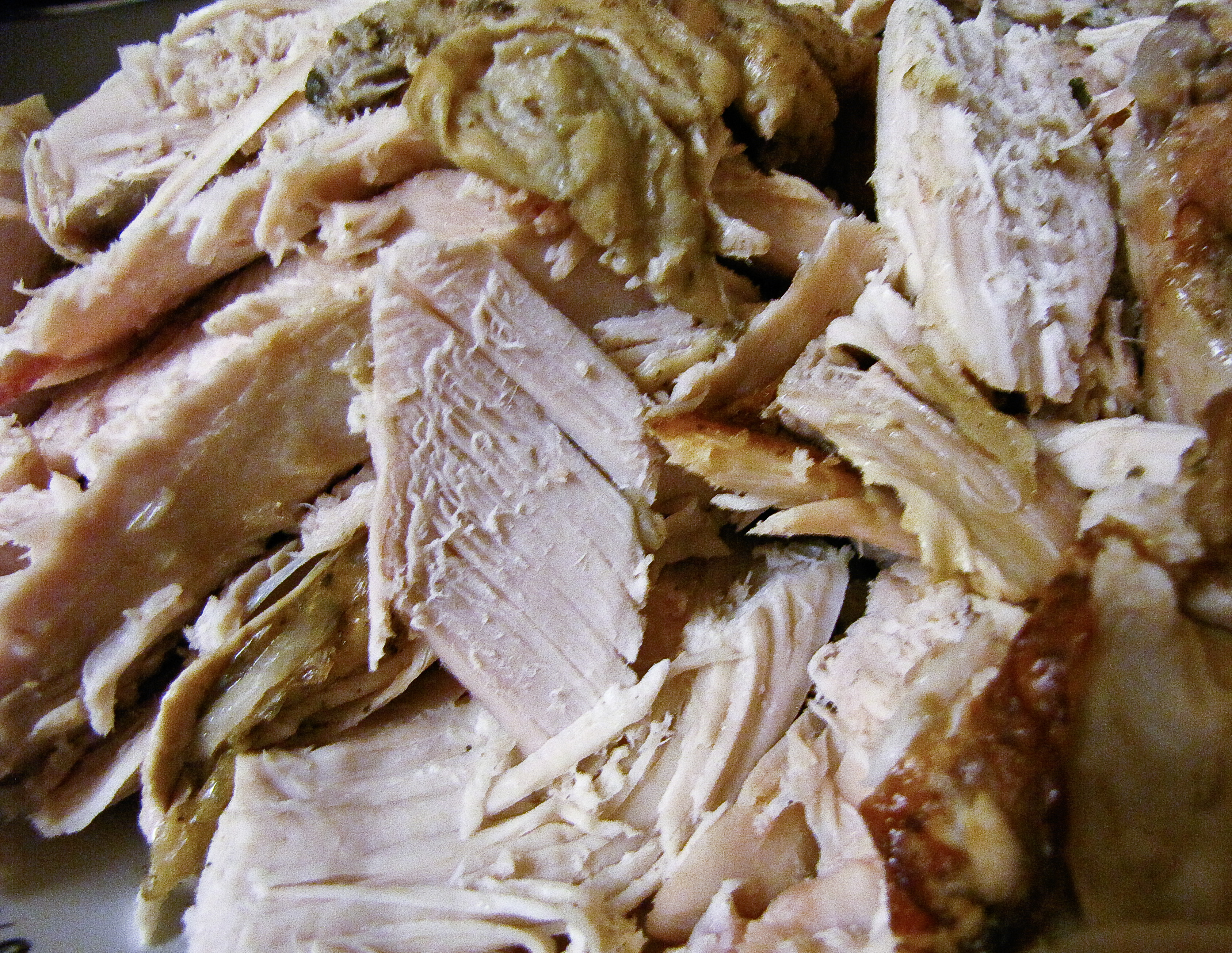 ... Days of Christmas Dish#7: Sage Butter Roasted Turkey with Cider Gravy